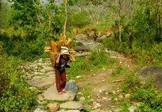 Nepalesisk liten flicka i den Nepal byn royaltyfria bilder