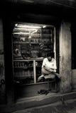 Nepalesisk man, Durbar fyrkant, Katmandu, Nepal Arkivfoton