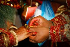 Nepali bröllop royaltyfri bild