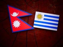 Nepali flag with Uruguaian flag on a tree stump isolated Stock Image