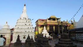 Nepali people walk around Swayambhunath stupa for worship stock video