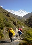 Nepali porters in the Everest trail stock images