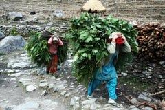 Nepali women Royalty Free Stock Photo