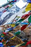 Nepalien sjunker på abc:et, på den Annapurna baslägertreken, Nepal Arkivbilder