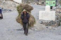 Nepalski ciężki życie Obrazy Royalty Free