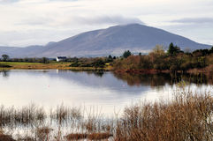 Nephin Mountain Royalty Free Stock Photography