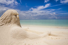 Neptun на пляже   Стоковое Изображение RF