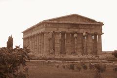 Neptune paestum Royalty Free Stock Image
