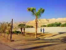 Neqev沙漠在一个晴天 以色列 免版税图库摄影