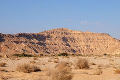 Neqev沙漠旱谷风景 免版税库存图片