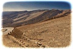 Neqev沙漠的葡萄酒图象在以色列 图库摄影