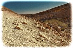 Neqev沙漠的葡萄酒图象在以色列 免版税库存照片