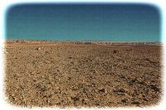 Neqev沙漠的葡萄酒图象在以色列 库存照片