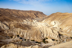 Neqev沙漠-以色列 库存图片