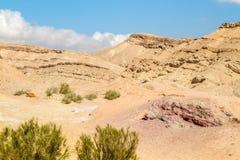 Neqev沙漠 库存图片