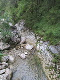 ner flod Royaltyfri Foto