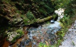 ner flod Royaltyfria Foton