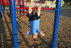 ner hängande översida Fotografering för Bildbyråer