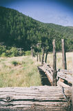 Ner på ranchen Royaltyfri Fotografi