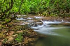 Nera rzeka Fotografia Royalty Free
