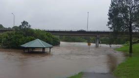 Nerang rzeka Obraz Stock