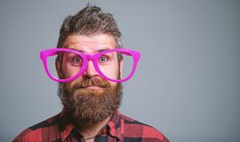 Nerd concept. Hipster looking through of giant pink eyeglasses. Man beard and mustache face wear funny big eyeglasses. Life in pink color. Naivety man. Naivety royalty free stock photo