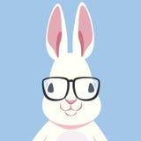 Nerd Rabbit royalty free illustration