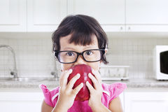 Nerd toddler in the kitchen Stock Photos