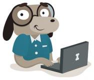 Nerdhund genom att använda en dator Arkivbild