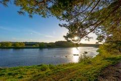 Neris flod Royaltyfri Foto