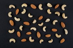 Nerkodrzewów nasiona na czerni Zdjęcia Stock