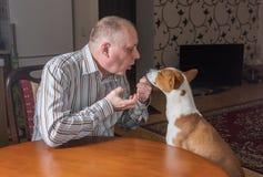 Nervöser Mann, der raues Gespräch mit Patient Basenji-Hund hat Stockfoto