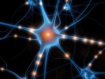 nerv клетки Стоковое Изображение