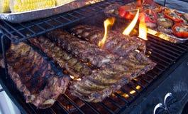Nervature del BBQ Fotografia Stock Libera da Diritti