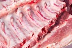 Nervature di porco grezze fotografia stock