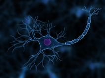 Nerve cell royalty free illustration