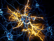 A nerve cell. 3d rendered illustration of a nerve cell Royalty Free Stock Image