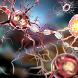 Nerve cells, concept for Neurological Diseases, tumors and brain surgery. 3d illustration of nerve cells, concept for Neurological Diseases, tumors and brain Royalty Free Stock Images