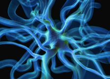 Nerve cells or Neurons Royalty Free Stock Photos