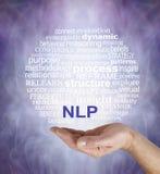 Nerven Wortwolke der linguistischen Programmierung Lizenzfreies Stockbild