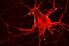 Nerves abstract background Stock Image