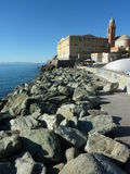 Nervi Royalty Free Stock Images