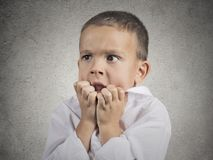 Nervous anxious stressed child boy biting fingernails Royalty Free Stock Images