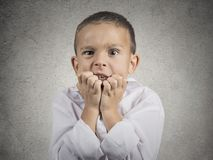 Nervous anxious stressed child boy biting fingernails Royalty Free Stock Image