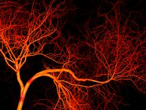 Nervous or blood system.  Medical illustration Royalty Free Stock Photography