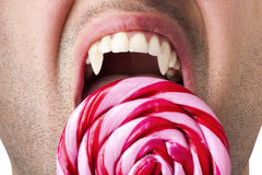 Nervous Hunger Man Fangs Bite Large Swirly Lollipop. Man Vampire Fangs hungry large Pink Spiral Swirly Lollipop isolated white background Royalty Free Stock Photos