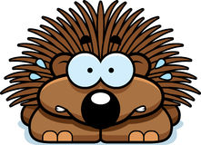 Nervous Little Porcupine. A cartoon illustration of a little porcupine looking nervous Stock Photos