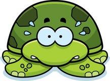 Nervous Little Sea Turtle Royalty Free Stock Photos