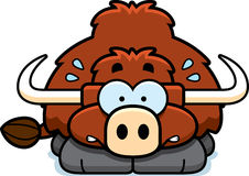 Nervous Little Yak. A cartoon illustration of a little yak looking nervous Stock Image