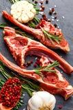 Nervures crues d'agneau avec des ingrédients pour faire cuire sur la table foncée photographie stock libre de droits